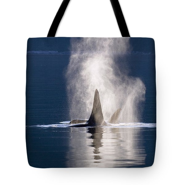 Orca Pair Spouting Southeast Alaska Tote Bag by Flip Nicklin