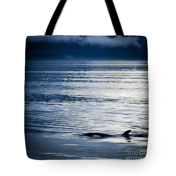 Orca Surfacing Tote Bag by Darcy Michaelchuk