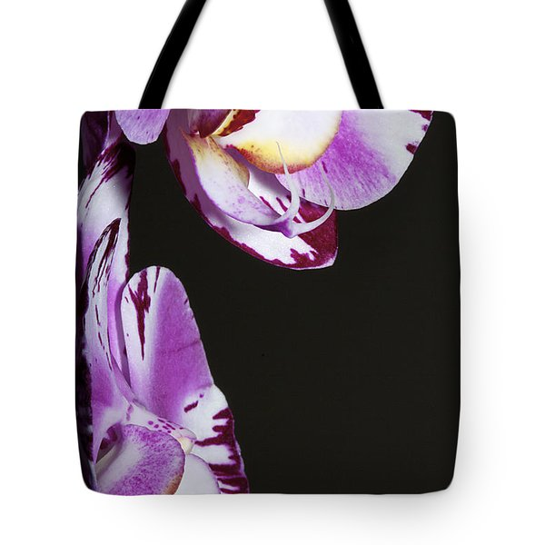 Orchid Stem Tote Bag by Phyllis Denton
