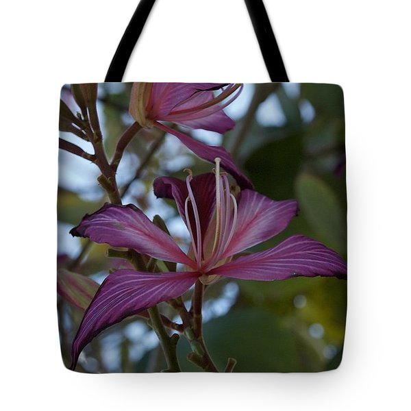Orchid Tree Tote Bag by Joseph Yarbrough