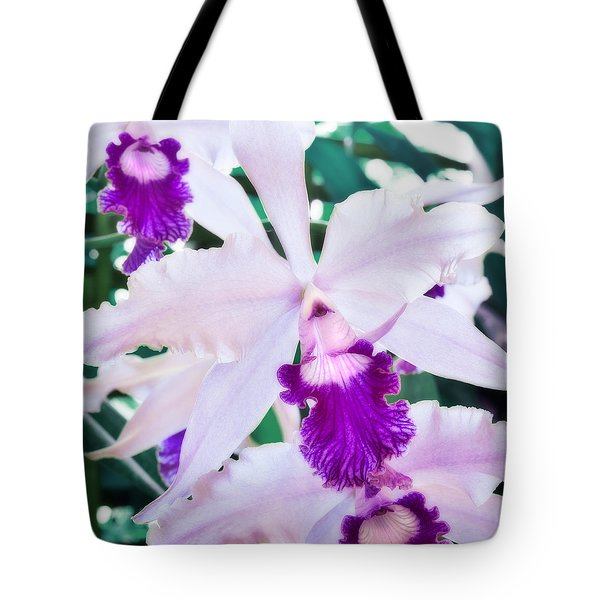 Tote Bag featuring the photograph Orchids White And Purple by Steven Sparks