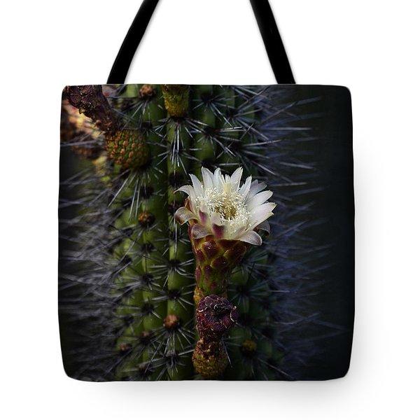 Organ Pipe Cactus  Tote Bag by Saija  Lehtonen