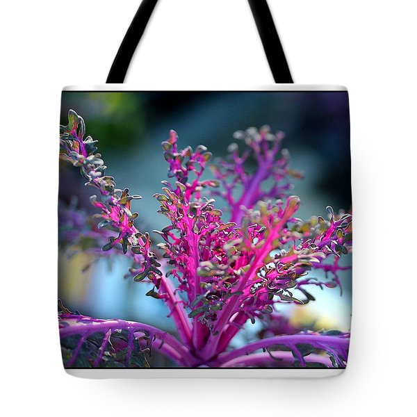 Ornamental Cabbage Tote Bag by Judi Bagwell