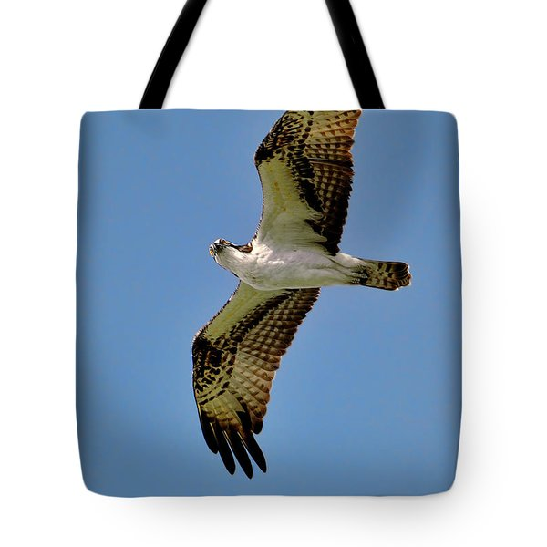 Osprey Above Tote Bag