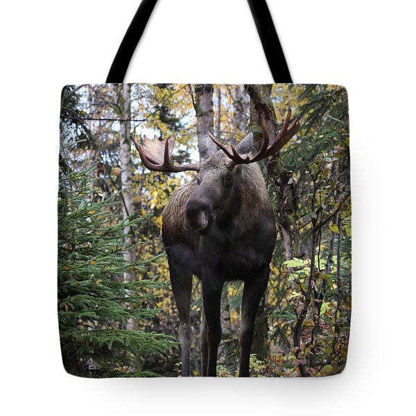 Out In The Open Tote Bag