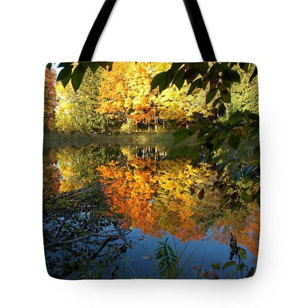 Out Of The Woods Tote Bag by LeeAnn McLaneGoetz McLaneGoetzStudioLLCcom