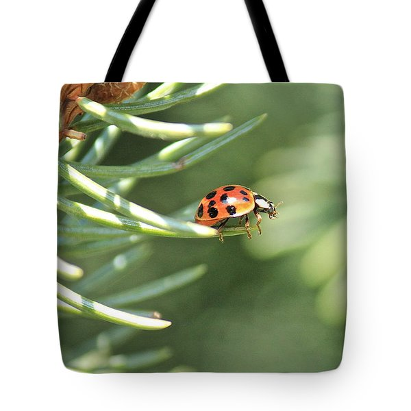 Tote Bag featuring the photograph Out On A Limb by Penny Meyers