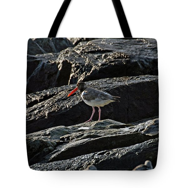 Oyster On The Rocks Tote Bag