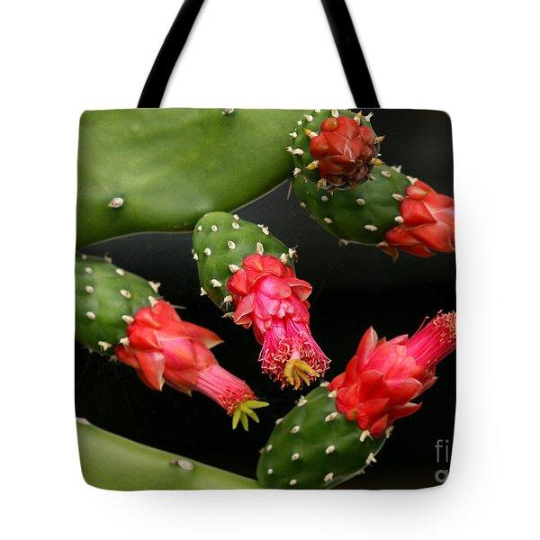 Paddle Cactus Flowers Tote Bag by Sabrina L Ryan