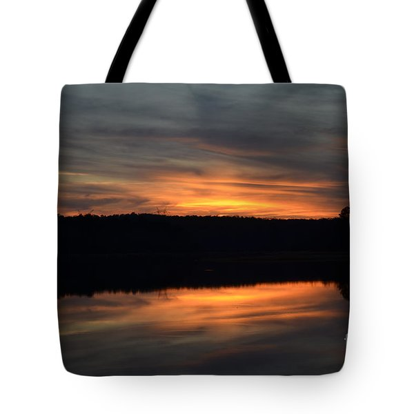 Painted Picture Perfect Tote Bag