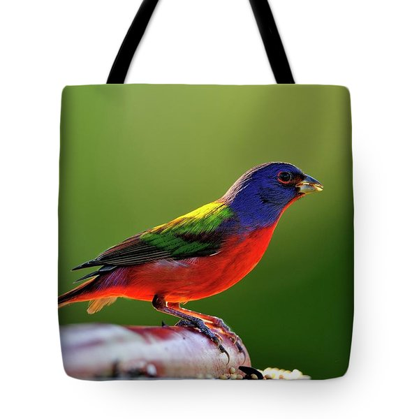 Painting Color Tote Bag