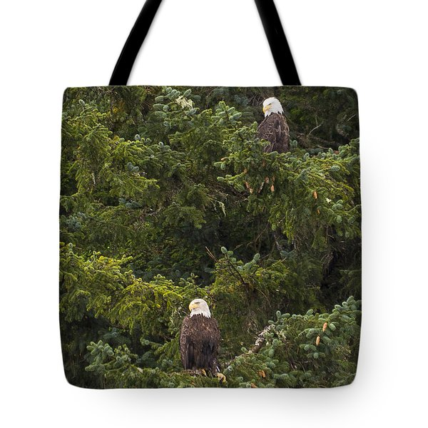 Pair Of Bald Eagles Tote Bag by Darcy Michaelchuk