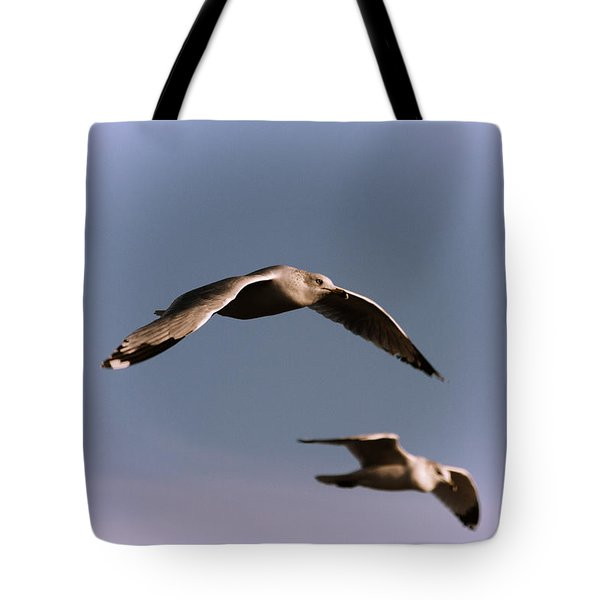 Pair Of Gulls Tote Bag by Karol Livote
