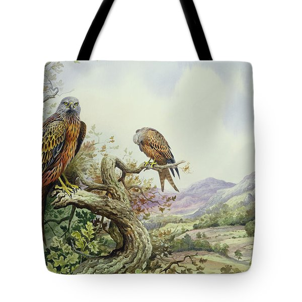 Pair Of Red Kites In An Oak Tree Tote Bag by Carl Donner