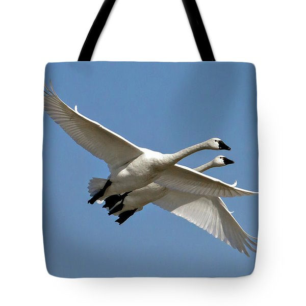 Pair Of Tundra Swans Tote Bag