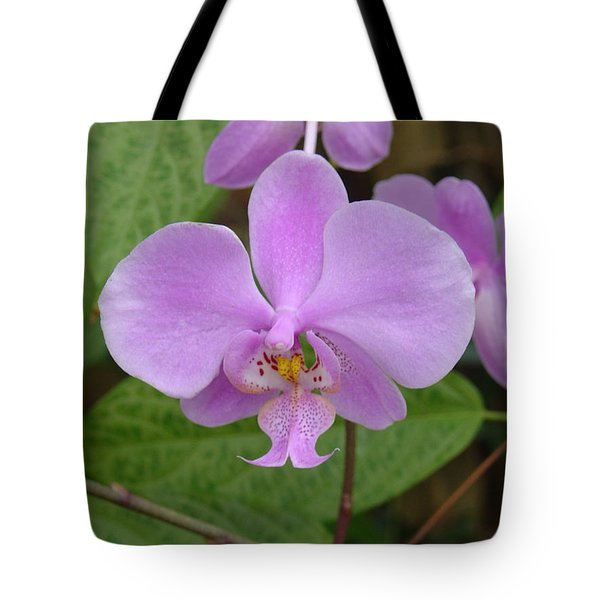 Pale Pink Orchid Tote Bag