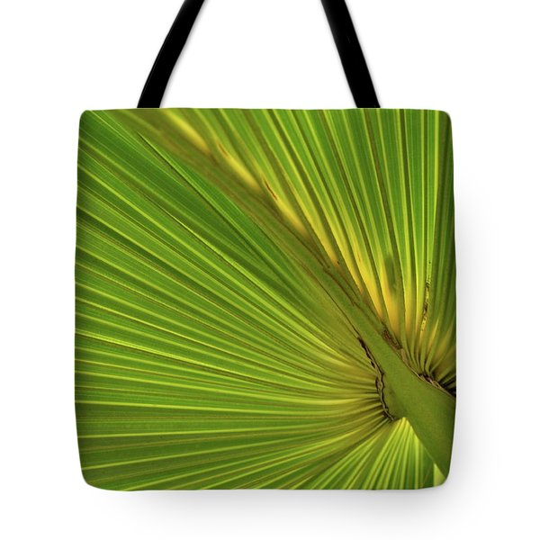Tote Bag featuring the photograph Palm Leaf II by JD Grimes