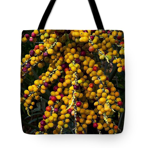Tote Bag featuring the photograph Palm Seeds Baroque by Steven Sparks