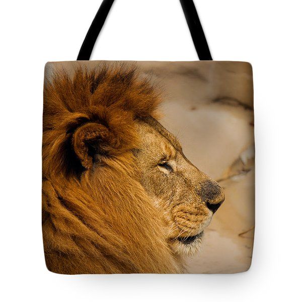Papa Can You Hear Me Tote Bag by Robin Konarz