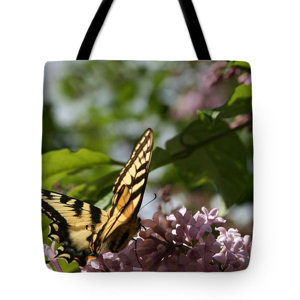 Papilio Glaucus   Eastern Tiger Swallowtail  Tote Bag by Sharon Mau