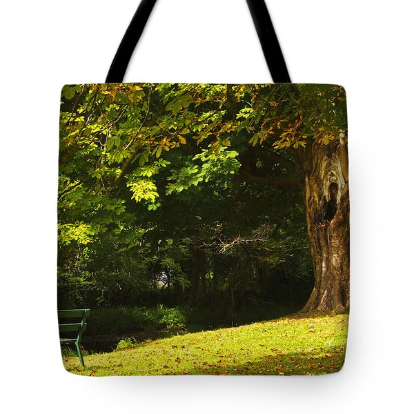 Park Bench Beside The Owenriff River In Tote Bag by Trish Punch