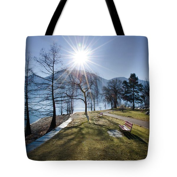 Park On The Lakefront Tote Bag