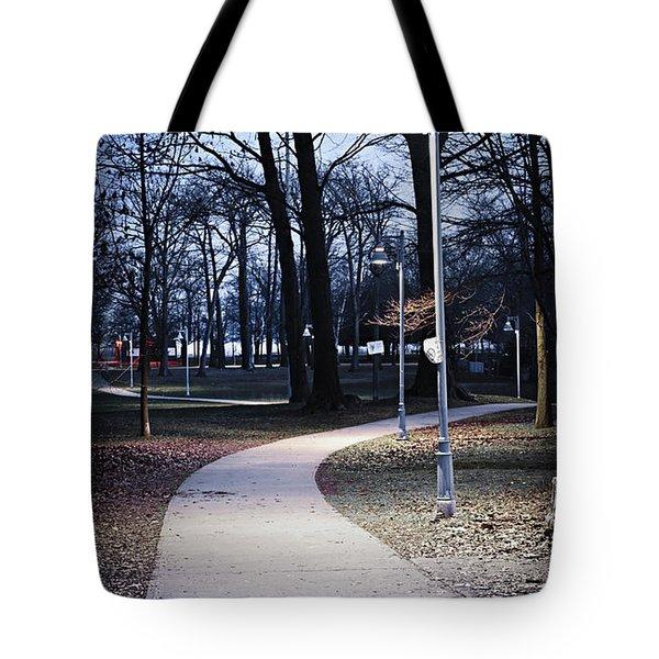 Park Path At Dusk Tote Bag by Elena Elisseeva