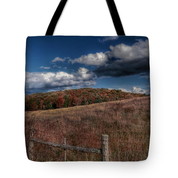 Parkway Fence Tote Bag by Todd Hostetter