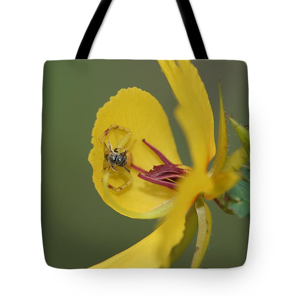 Partridge Pea And Matching Crab Spider With Prey Tote Bag