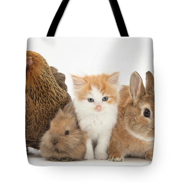 Partridge Pekin Bantam With Kitten Tote Bag by Mark Taylor