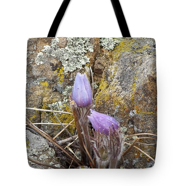 Pasque Flowers Tote Bag