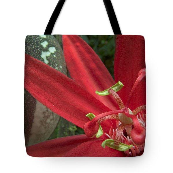 Passion Flower Blossom Costa Rica Tote Bag by Piotr Naskrecki