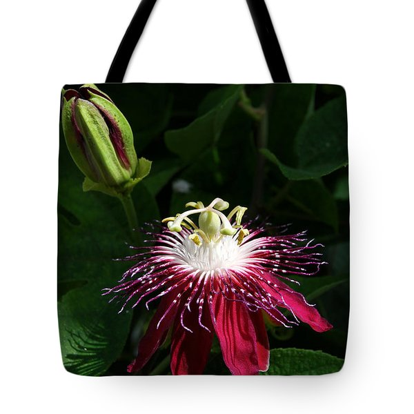 Passion Flower Tote Bag by Eva Kaufman