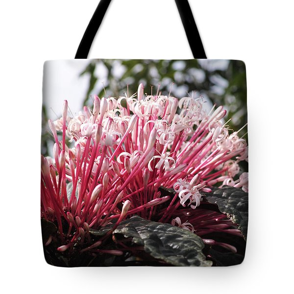 Passion For Pink Tote Bag