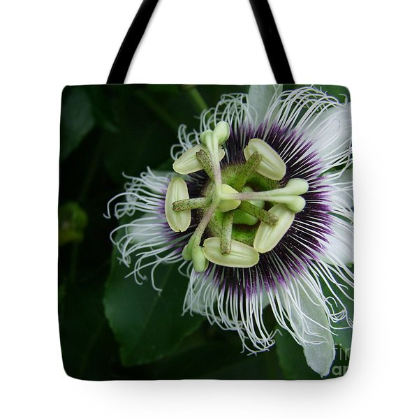 Passion Fruit Flower Tote Bag by Mary Deal