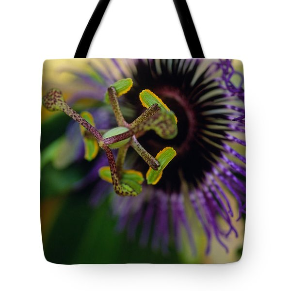 Passionate Flower Tote Bag by Kathy Yates