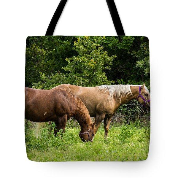 Pasture Time Tote Bag by Doug Long
