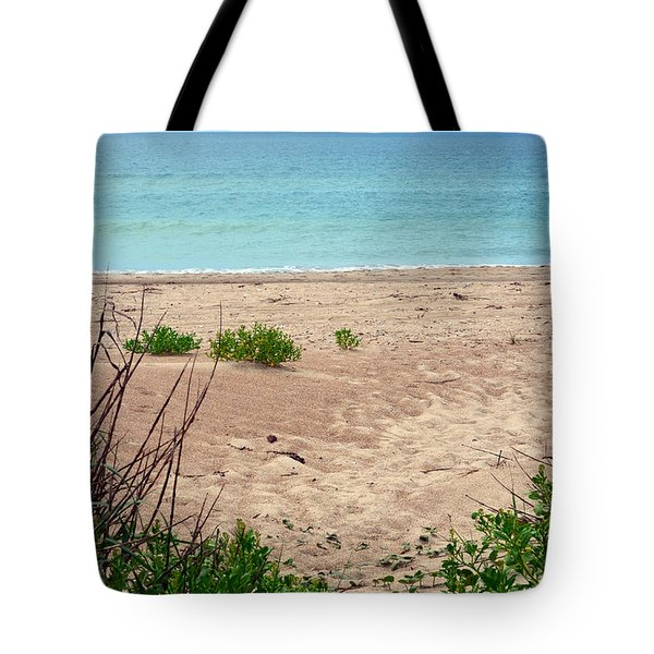 Pathway To The Beach Tote Bag by Sandi OReilly