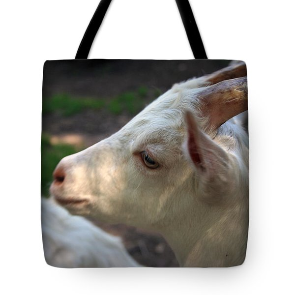 Tote Bag featuring the photograph Patience Is A Virtue by Kay Novy