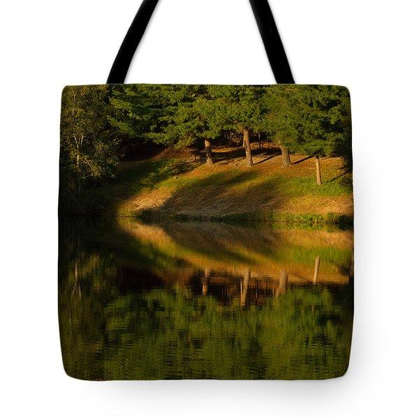 Patterns Of Nature Tote Bag by Karol Livote