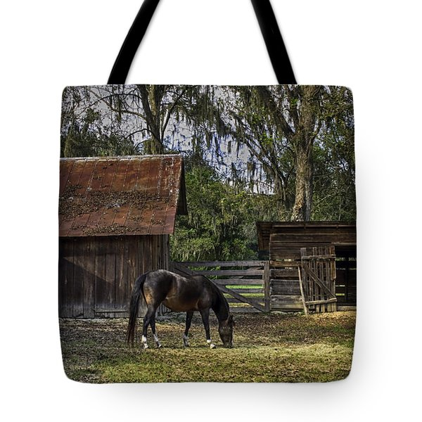 Peaceful Afternoon Tote Bag by Lynn Palmer