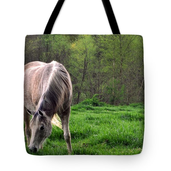 Tote Bag featuring the photograph Peaceful Pasture by Lydia Holly