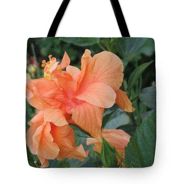 Peach Hibiscus  Tote Bag