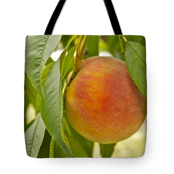 Peachy 2903 Tote Bag by Michael Peychich