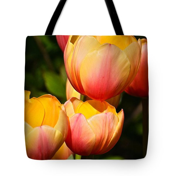 Peachy Tulips Tote Bag by Byron Varvarigos