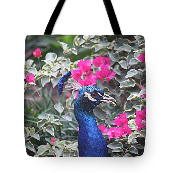 Tote Bag featuring the photograph Peacock And Bouganvillas by Donna Smith