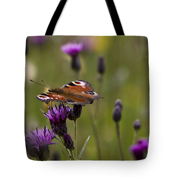 Peacock Butterfly On Knapweed Tote Bag