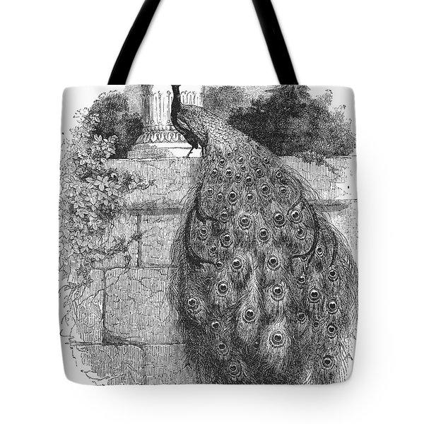 Peacock Tote Bag by Granger