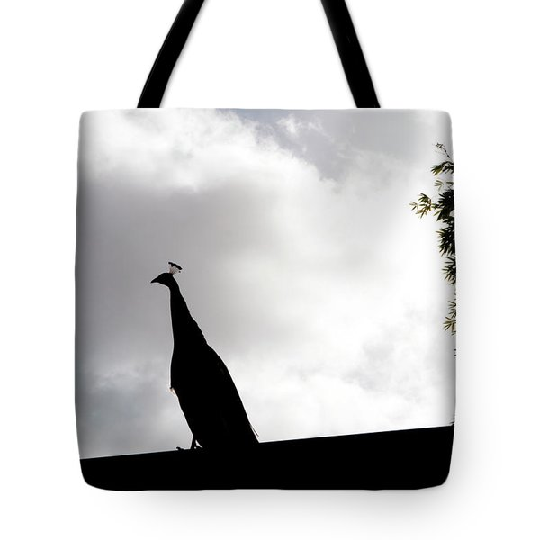 Tote Bag featuring the photograph Peacock Sentry by Lorraine Devon Wilke