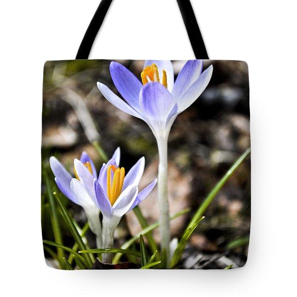 Peaking Spring Tote Bag